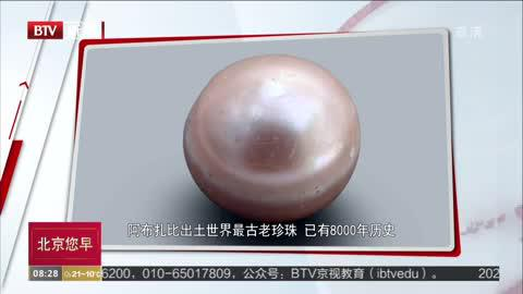阿布扎比出土世界最古老珍珠  已有8000年历史
