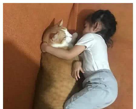 铲屎官养了只橘猫,希望它和女儿一起长大,结果橘猫长得快多了