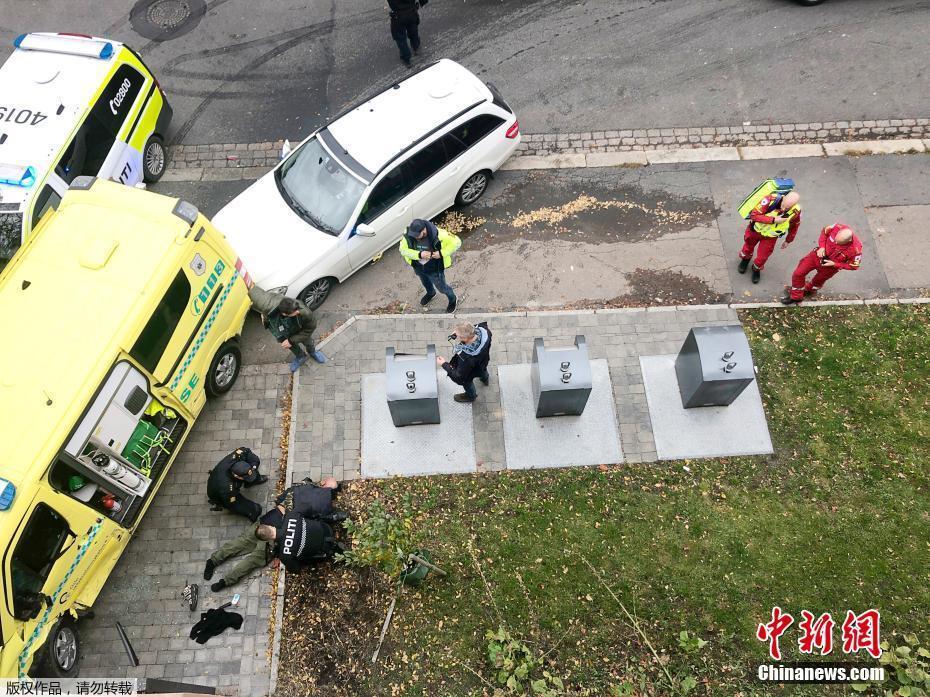 救护车也偷?挪威小偷携带武器偷走救护车撞伤两名儿童救护车也偷?挪威小偷携带武器偷走救护车撞伤两名儿童