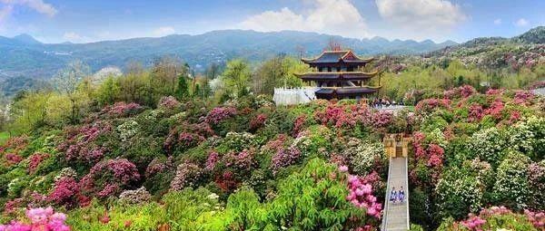 海洋世界、动物园、温泉、名胜风景等128元任玩,2020年锦绣江山旅游年票贵州版预售开抢
