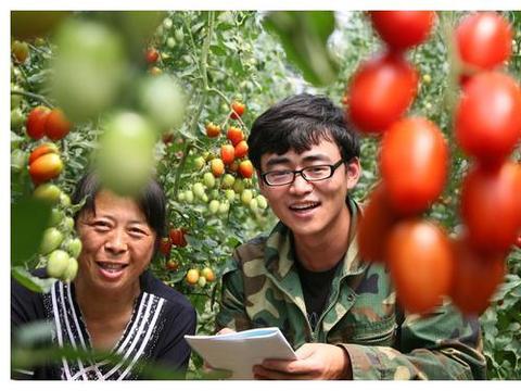 农户从事农业种植工作,有哪些特产品种能够帮助效益获得提高?