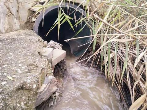 运城盐湖区:湖长制公示牌下污水直排盐湖