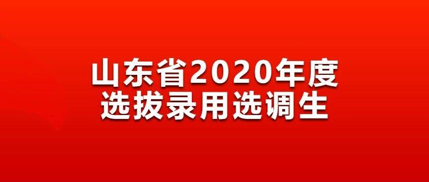泰安有岗!山东省2020年定向选调生追加94人!附职位表