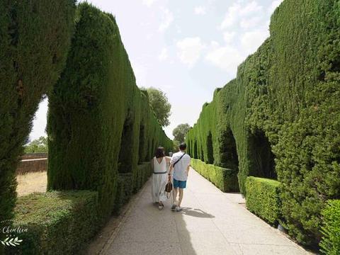 西班牙著名皇宫,被称为世界奇迹,《阿尔汗布拉宫的回忆》拍摄地
