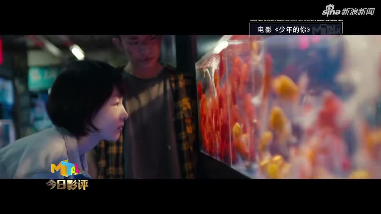 视频-CCTV6谈流量明星 影评人:自恋是帅男美女墓志铭