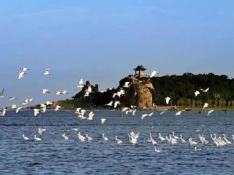 北戴河鸽子窝公园,在这里看到唯美的海上日出