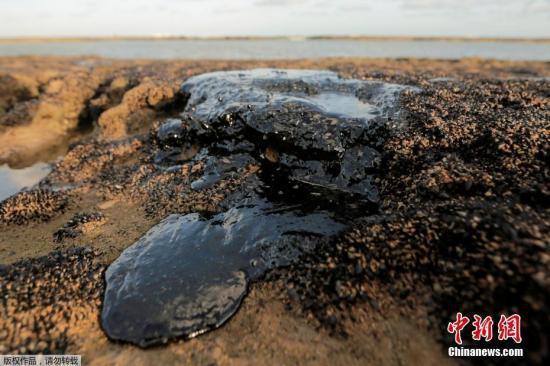 巴西海岸原油污染影响大 已扩散