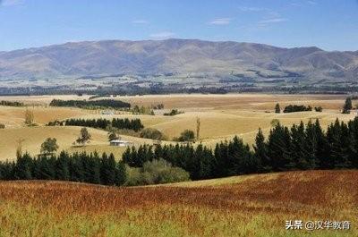 十月红叶美如画——跟留学生一起,探索新西兰的秋......