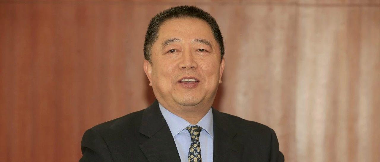 建业新生活:胡葆森划了一条安全线丨穿透IPO