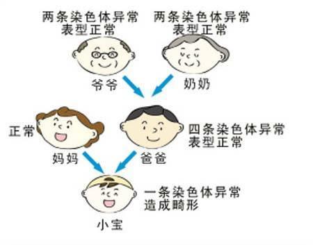 丈夫如果染色体异常,试管技术能避免染色体异常的孩子出生吗?