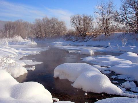 """基本确定,今年是""""暖冬"""",常会伴随倒春寒,农民朋友注意下"""
