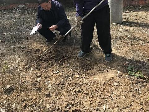 应城发现五千年前新石器时代遗址