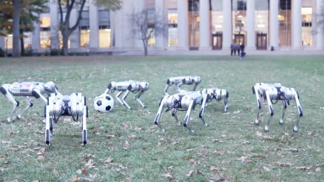 视频-猎豹机器人硬核足球赛 能做后空翻四肢可弯曲