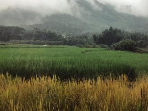 """国内最""""香""""的古村,被称为深山里的布达拉宫,游客都赞不绝口"""
