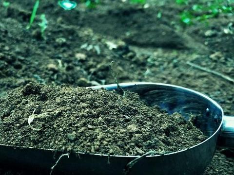 养花用黑土,拌点颗粒效果好,推荐几款