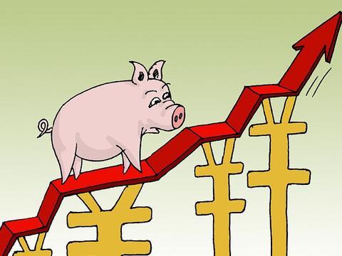 生猪价格持续高企,猪肉泡沫何时破灭?猪价似乎消停了点儿