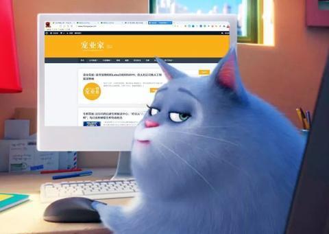 猫主粮成天猫国际双11最受欢迎进口商品NO.1 | 宠业简报