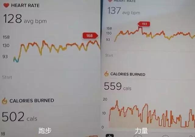 健身房举铁 VS 40分钟有氧运动,两者减脂差距有多大?