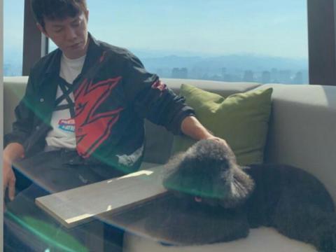 周杰伦:天气好 带两只宠物晒太阳 其实是三只宠物