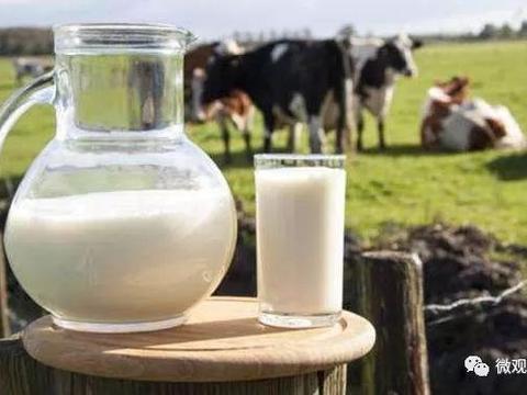 福建省乳品进口量同比增长17%