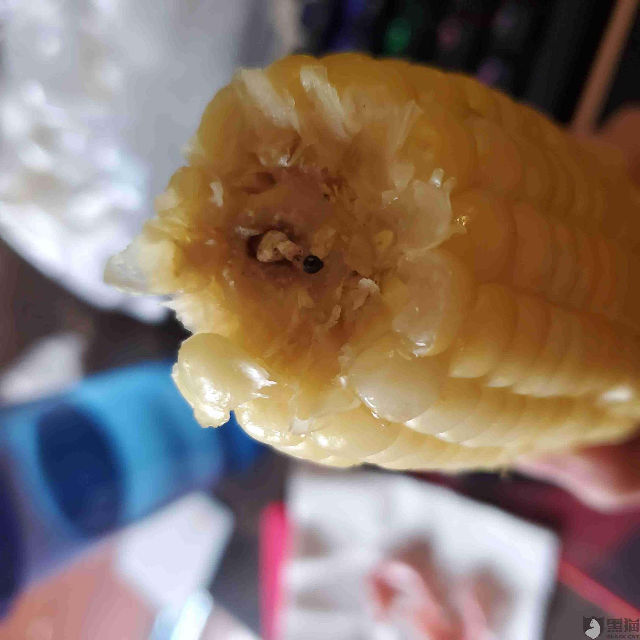 黑猫投诉:在美团上的好味当大食堂点的玉米里面有一个大虫子