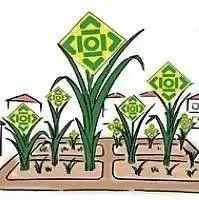 寻乌县再拨270万元支持供销社惠农服务中心建设