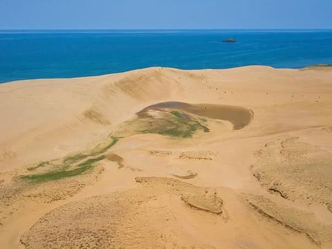 """世界唯一受""""保护""""沙漠,为阻止变绿洲,如今当地开始计划除草"""