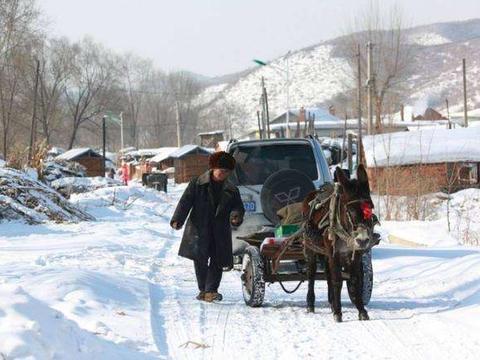 农村老人爱说:冬在中,单衣能过冬,今年过年冷不冷呢?