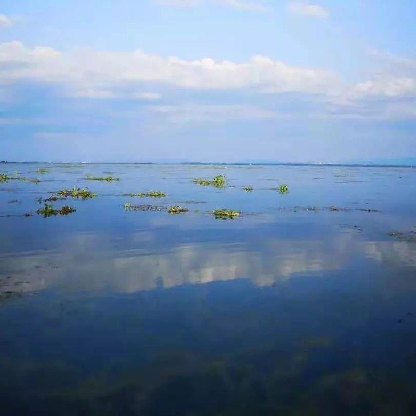 饮水源头水清岸绿,斧头湖上鱼跃鸟飞!全域联动,精心绘制水生态美景图