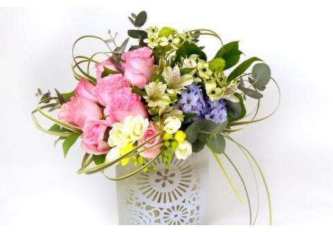 亲手培育花卉种子,生根发芽到开出艳丽的花蕾,才有成就感