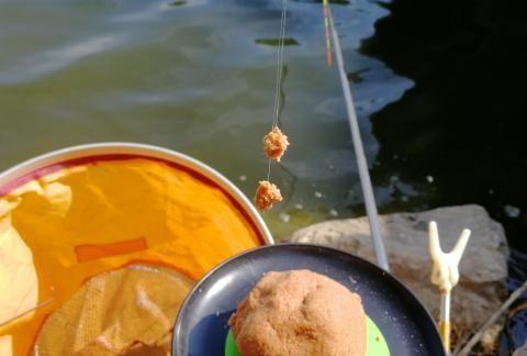 钓鲫鱼没口或者有口不中鱼,学会这样调整,鱼口一抓一个准