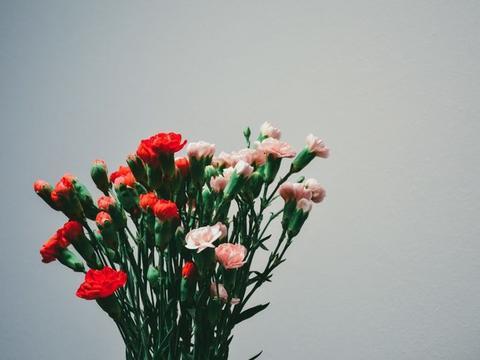 近段时间内,缘分与桃花温情难离,余生美好相守的3大生肖!