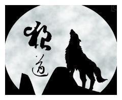 狼道哲学:做一只能够领悟职场智慧的野狼