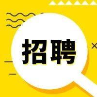 郑州科技学院招聘辅导员17名