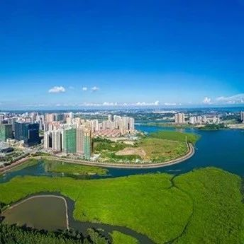 今天,防城港再获重量级新名片——国家森林城市!