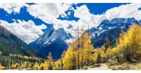 今年国庆假期旅游收入前十西部省份只有4个 四川全国第三