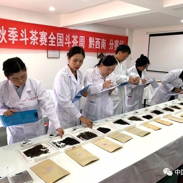 2019贵州秋季斗茶赛全国斗茶周黔西南分赛在兴义市举行