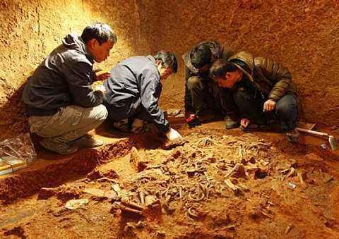 盗洞冒出奇异香气,专家断定墓下有皇帝,挖开后光黄金就多达百斤