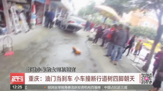 重庆:油门当刹车 小车撞断行道树四脚朝天