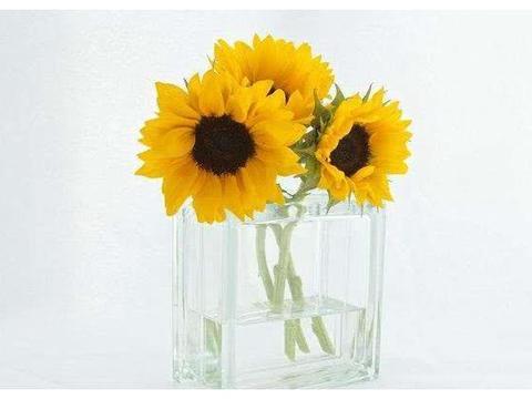 心理测试:4个花瓶,你最喜欢哪个?测试你的婚姻会有多长久