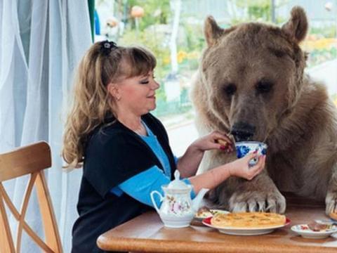 俄罗斯人把棕熊当二哈养,印度人把蛇当玩具,澳洲人呼吁吃袋鼠肉