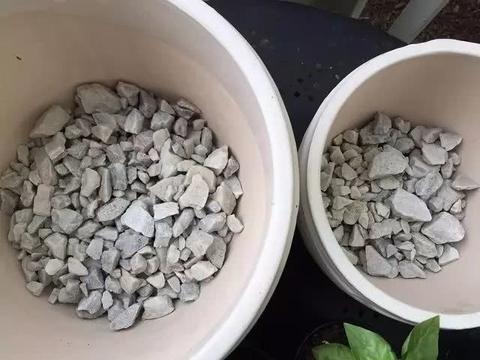 花盆底部排水孔处很适合垫上这几种东西,盆土不会积水,不怕烂根