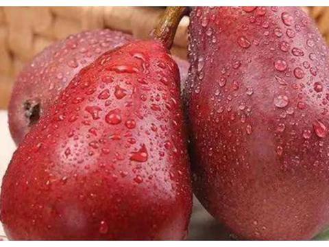 有种梨吃起来像冰淇淋,还能用吸管吸?看得人心动不已