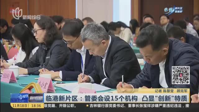 """临港新片区:管委会设15个机构  凸显""""创新""""特质"""