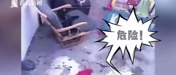 男婴坠楼瞬间一只猫出手了!网友:猫为这个家操碎了心