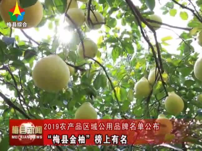 """2019农产品区域公用品牌名单公布  """"梅县金柚""""榜上有名"""