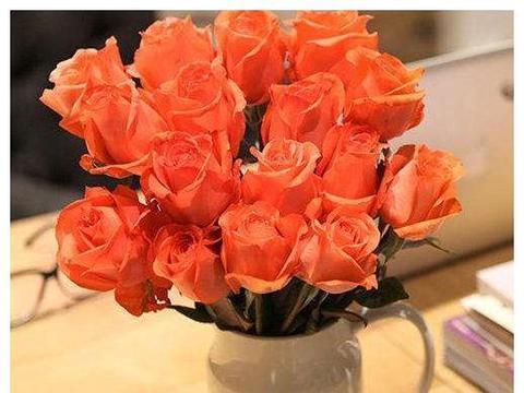 """喜欢玫瑰,首选""""玫瑰珍品""""影星,唯美如美人,花色浓艳!"""