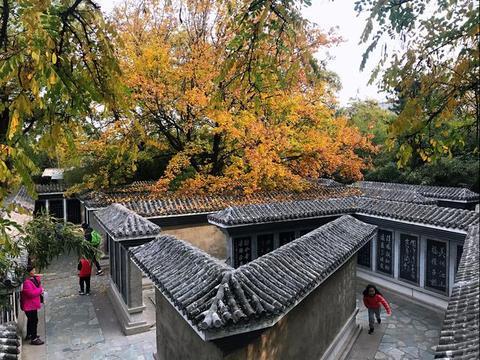 北京朋友推荐了个赏红叶的好去处,我成功避开了香山的人从众