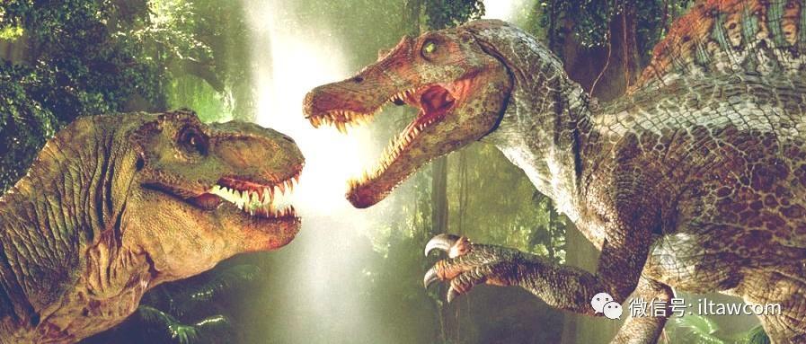 最大型的陆生肉食性恐龙之一棘龙