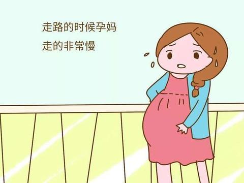 为什么孕期里的准妈妈走路像企鹅?翻身像乌龟?